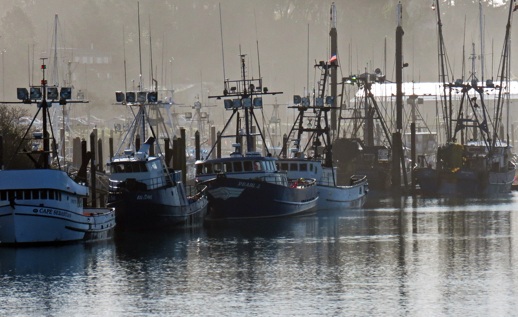 Local area old dog sportfishing for Fishing brookings oregon