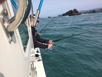 Old Dog Sportfishing Papa B